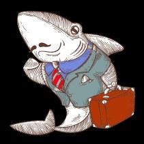 shark suit b.jpg