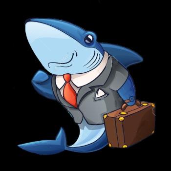 shark suit.jpg
