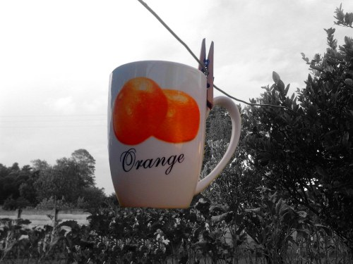 The coffee mug labelled orange