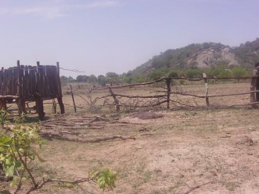 masogwe