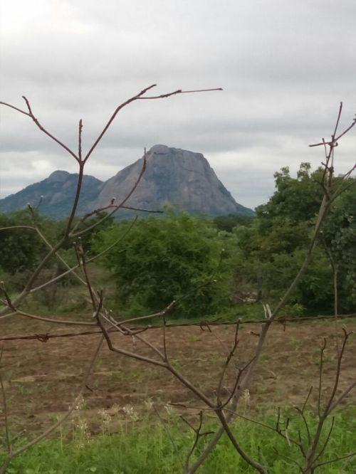 Zhanje Mountain, Neshuro Zimbabwe