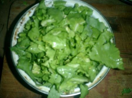 wilted lettuce or kilt lettuce