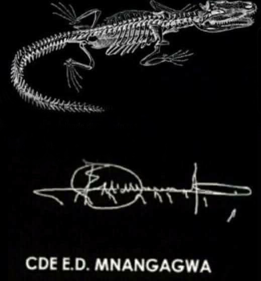 Emmerson Mnangagwa signature crocodile