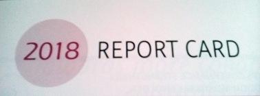 2018 global report