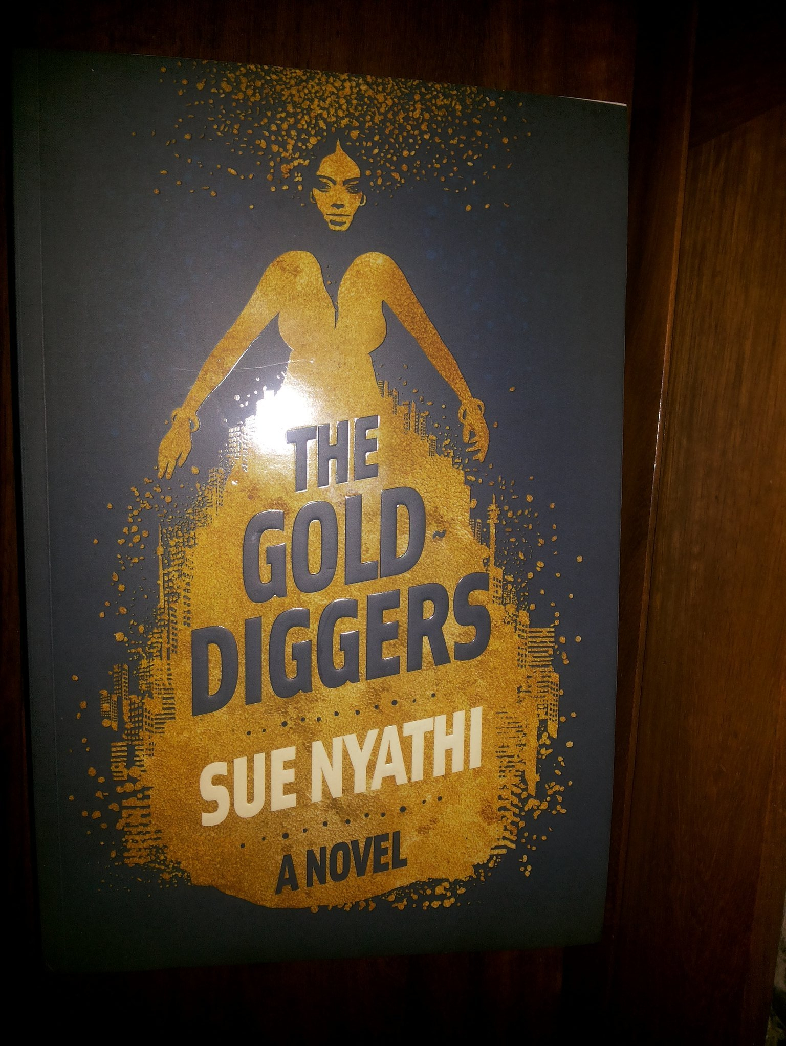 The Gold Diggers a novel by sue nyathi