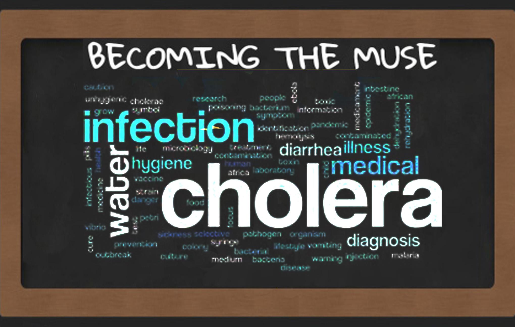 zim cholera outbreak