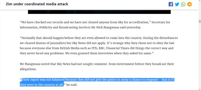 Zim under coordinted media attack