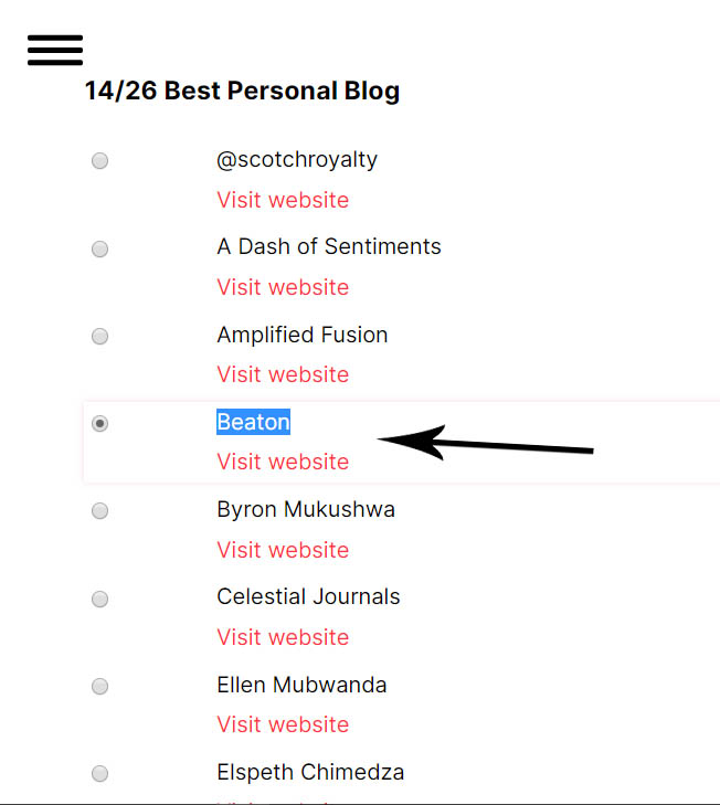 Nominees for the best Personal Blog ZimBlog awards