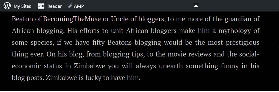 Beaton of BecomingTheMuse or Uncle of bloggers, to me more of the guardian of African blogging. His efforts to unit African bloggers make him a mythology of some species, if we have fifty Beatons blogging would be the most prestigious thing ever. On his blog, from blogging tips, to the movie reviews and the social-economic status in Zimbabwe you will always unearth something funny in his blog posts. Zimbabwe is lucky to have him.