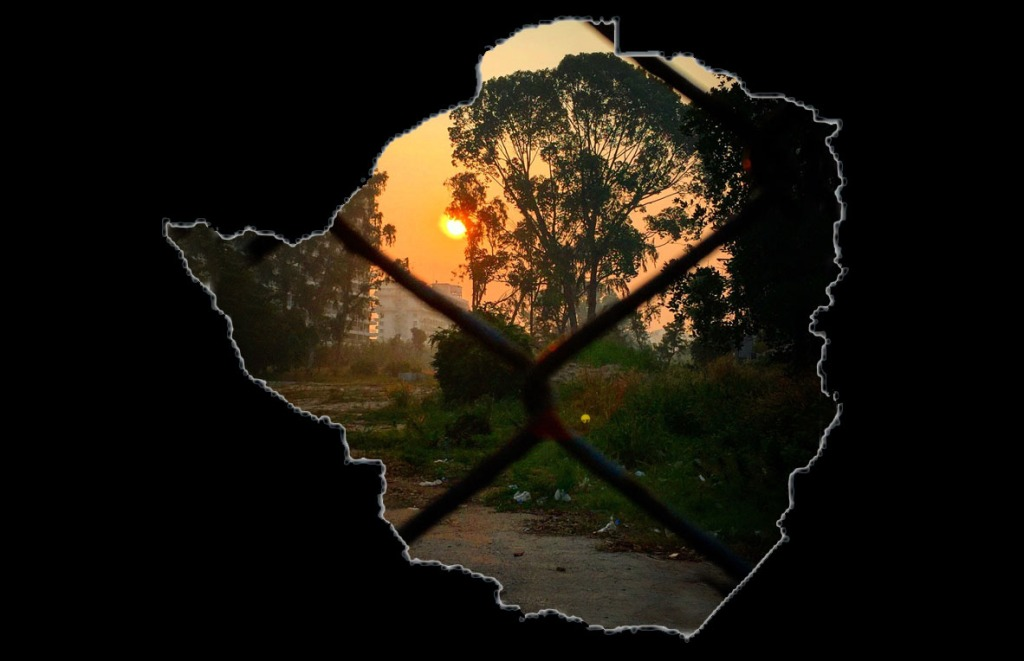 FreeZimbabwe ZimbabweanLivesMatter