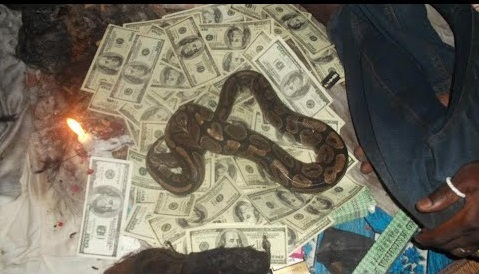 Snake Money ritual