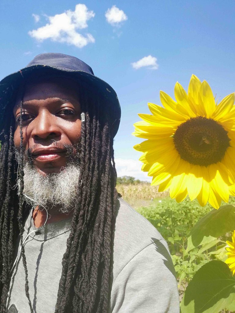 Beaton Sunflower